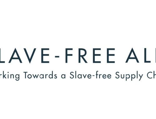 Slave Free Alliance
